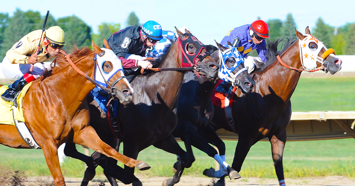 Just Horsin' Around: Fun Facts about Horses & Jockeys, by Prairie Meadows